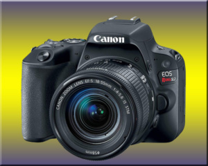 Canon sl2 for review