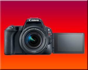 canon sl2 screen finished